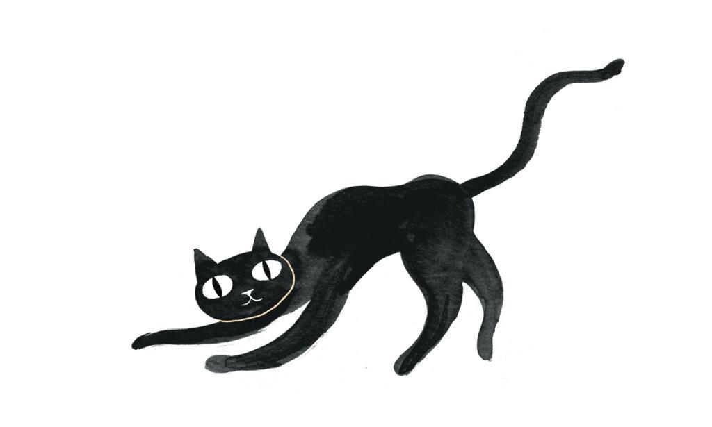 Fastelavn: sort kat