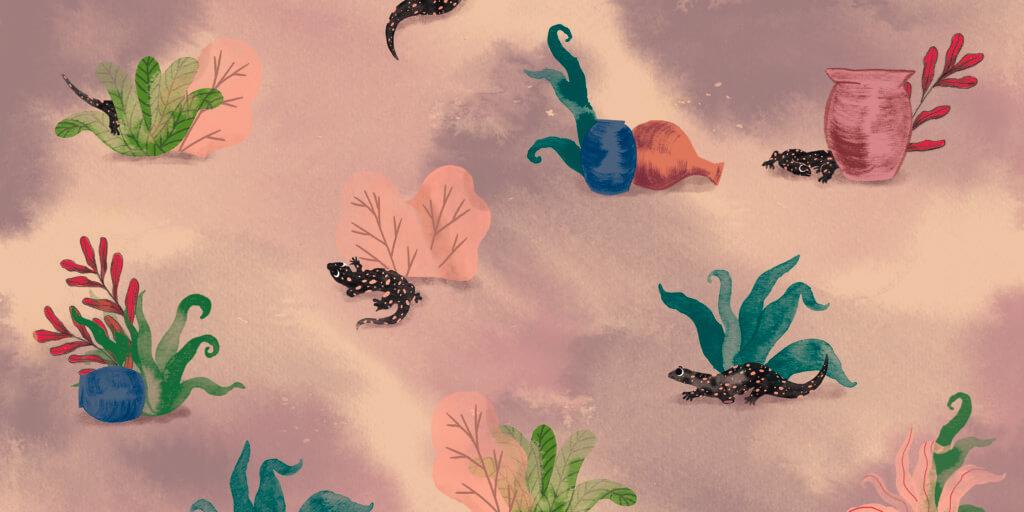 Bibelfortællinger for børn: Adam, Anna og hullet i taget - Illustration med salamandere og krukker